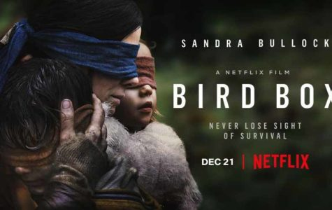 Birdbox Review