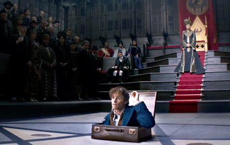 Newt steps out of his magical briefcase into a meeting with the Magical Congress of USA.