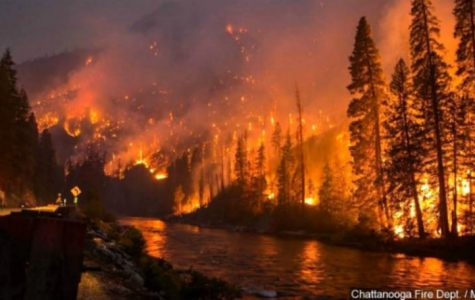 Tennessee set ablaze from wildfires