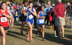 Cross Country Strides to Success
