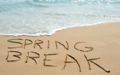 Four Activities To Do on Your Spring Break in The Upstate