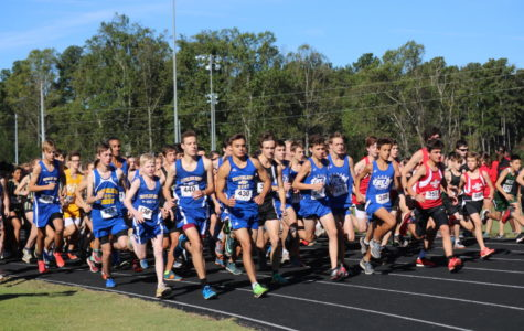 Cross Country Hosts Region