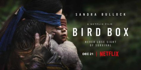Movie cover for Birdbox