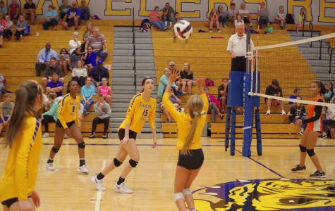 Volleyball – Looking to the future