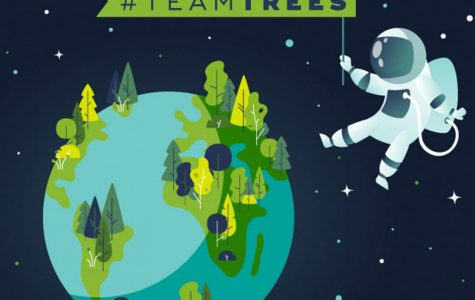 #TeamTrees: How Reddit Saved the World