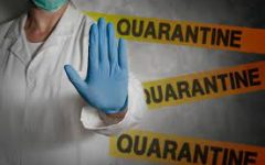 1 Year Anniversary of Quarantine